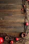 Winter fruits,candles and twigs — Foto Stock