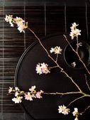 Kirschblüte auf japanisch schwarzes tray — Stockfoto