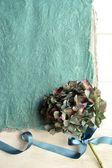 Blue gray hydrangea with ribbon — Stock Photo