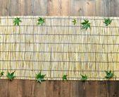 Grüner fächerahorn auf bambusjalousie — Stockfoto