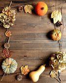 Pumpkin,dried hydrangea and fall leaf — Stock Photo