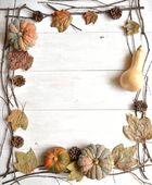 Pumpkin,pine cone and fall leaf — Stock Photo
