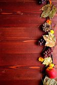 Autumn fruits,fall leaf and yellow cosmos — Stock Photo