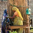Indian womens — Stock Photo