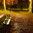 Stock Photo: Vacant park bench in autumn