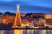 Stockholms old city with christmas tree — Stock Photo