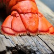 Lobster tail — Stockfoto #40549703