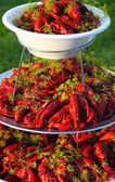 Boiled or steamed crawfish — Stok fotoğraf