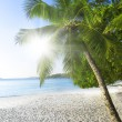 Stock Photo: Island of dreams. Rest and relaxation. White coral sand and