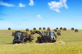 Farmers harvesting hay — Stock Photo