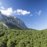 Ai-Petri rock under blue sky. The green hills around. Ukraine. C — Stock Photo