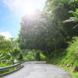 Asphalt road in tropical forest. — Stock Photo #27572871
