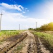 Landscape of road with tractor track in sunset — Stock Photo