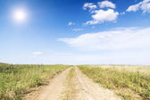 Landscape of road with tractor track in green field — Stock Photo