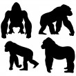 Gorilla — Stock Vector #19651943