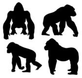 Gorilla — Stock Vector