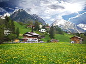 Oberstdorf, Germany Landscape — Stock Photo