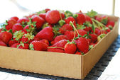 Red Ripe Strawberries in Carton Box — Stock Photo