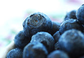 Ripe blueberries in a bowl. — Stock fotografie