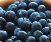 Ripe blueberries in a bowl. — Foto de Stock