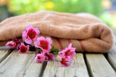 Towel candle flowers — Foto Stock