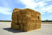 Hay. — Stock Photo