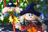 Halloween decoration — ストック写真