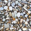 Sestones shells background — Stock Photo #19847037