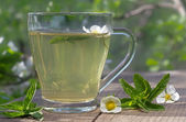 Tea with mint — Foto de Stock