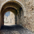 Arch of the ancient fortress — Stock Photo