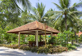Gazebo in tropical park — Stock Photo