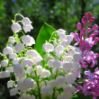 Lilly of the Valley and spring lilac flowers bouquet - Stock Photo