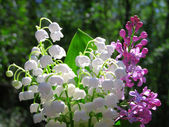 Lilly of the Valley and spring lilac flowers bouquet — Stock Photo