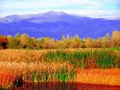 El paisaje otoñal de la montaña — Foto de Stock