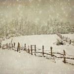 postal de fotografía de invierno envejecimiento — Foto de Stock   #17009563