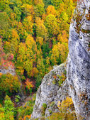 Autumn image in the mountain — Stock Photo