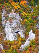 Imagen de otoño en la montaña — Foto de Stock