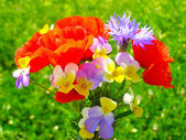 Bright colorful bouquet of garden and wild natural flowers — Stock Photo