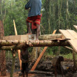 Logging - Remote Western Uganda — Stock Photo