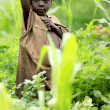 Poverty in Remote Western Uganda — Stock Photo #12321591