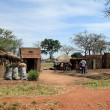 African Huts - Uganda, Africa - Stock Photo