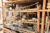 Mercato dei polli - soroti, uganda, africa — Foto Stock