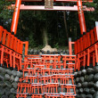 Fushimi Inari, Kyoto, Japan — Stock Photo