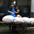 Fish on Cart - Tsukiji Fish Market, Tokyo, Japan — Stock Photo