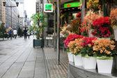 フラワー ショップ - 銀座地区、東京、日本 — ストック写真