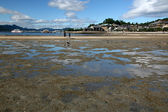 Mud Flats at Low Tide - Miyajima, Japan — Stock Photo
