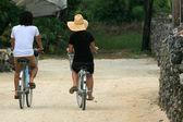 骑自行车-富岛岛、 冲绳岛、 日本 — 图库照片