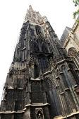 собор святого стефана, святой собор стефана, вена — Стоковое фото