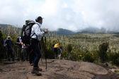 Mt Kilimanjaro, Tanzania, Africa — Stock Photo