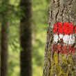 Trail Marker Austria — Stock Photo